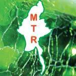 MYANMAR THURA GEMS COMPANY LIMITED Jade