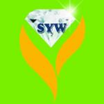 Shwe Ywet War Gold Shops/Goldsmiths